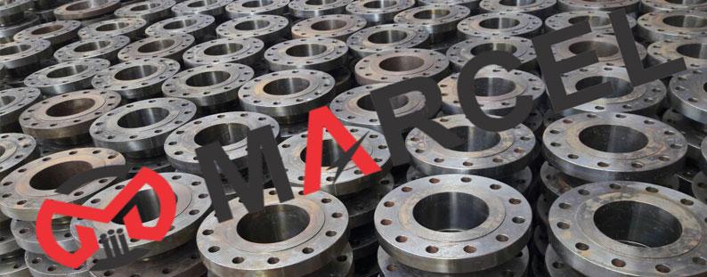 ASTM A182 S31803/S32205 Duplex Steel Flanges