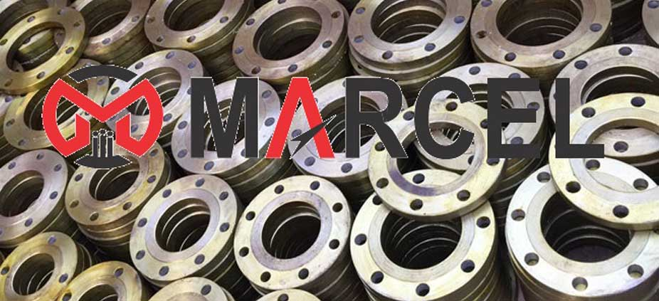 Stainless Steel Plate Flange Manufacturer in India